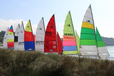 Hobie Cats rigged and ready at the Mercury Bay Boating Club